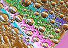 Rainbow Drops by Tori Snow