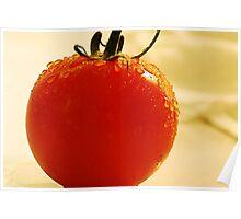 Garden Fresh Tomato Poster