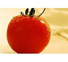 Garden Fresh Tomato Photographic Print