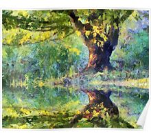 Big Tree Beside Pond Poster