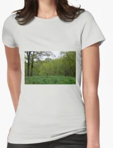 Spring Green Womens Fitted T-Shirt