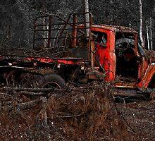 Rust In Peace 9 by rossco