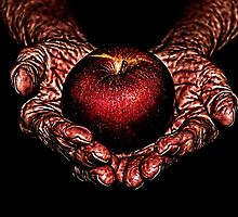 Hands Of Hope Fine Art Print by stockfineart