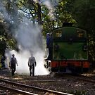 Through the Steam by Di Jenkins