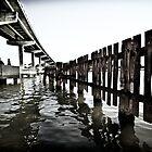 Troubled Bridge over Water! by Craig Hender