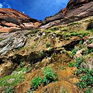 A Side of Zion by Barbara Manis