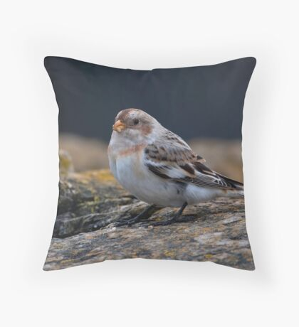 Snow Bunting Throw Pillow