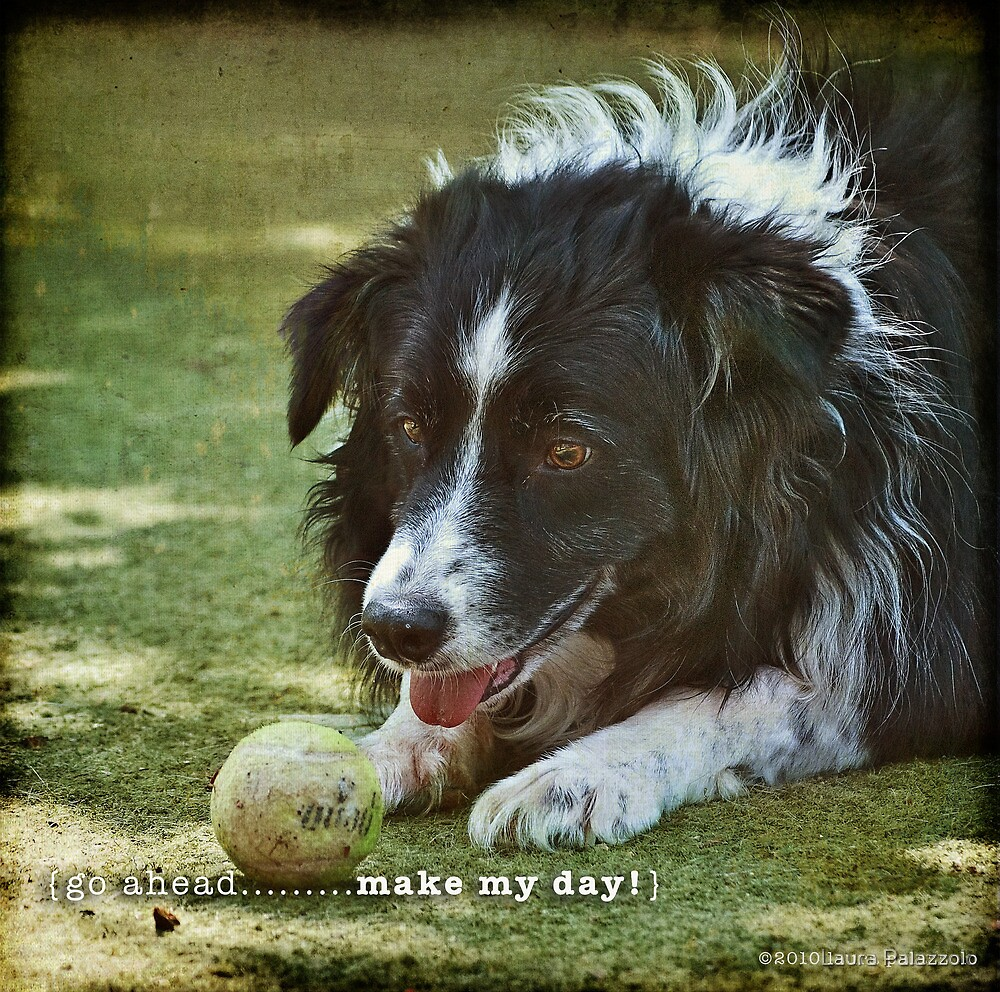 go ahead...make my day by Laura Palazzolo