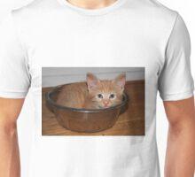 Kitten in a Bowl Unisex T-Shirt