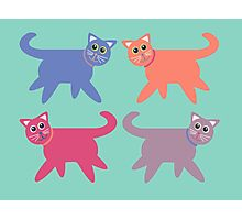 4 Colorful Cats Photographic Print