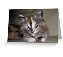 Portrait of Sushi Greeting Card