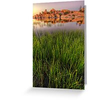 The Secret Life of Grass Greeting Card