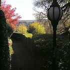 convent paths by Deb Gibbons