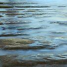 Godfreys Beach Stanley Tasmania by tinnieopener