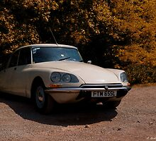 Citroen DS by Aggpup