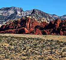 Red Rock Canyon by Judy Vincent