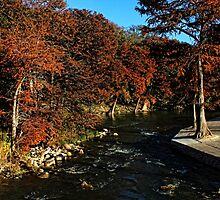 Guadalupe River in Gruene TX by Judy Vincent