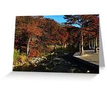 Guadalupe River in Gruene TX Greeting Card