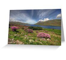 Killary Fjord Greeting Card
