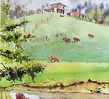 House on a hill - Arthurs Creek by Christine Lacreole