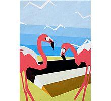 Flamingo Beach Photographic Print