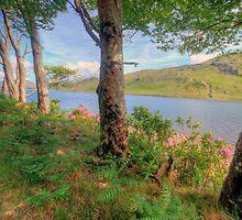 Scenic Connemara lake by John Quinn