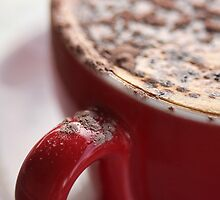 Cocoa Dust by Barb Leopold