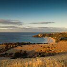 Kangaroo Island Vista by Stephen Colquitt
