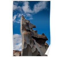 Kangaroo Island rock formations Poster