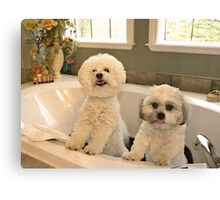 Bath Tub Party  Canvas Print