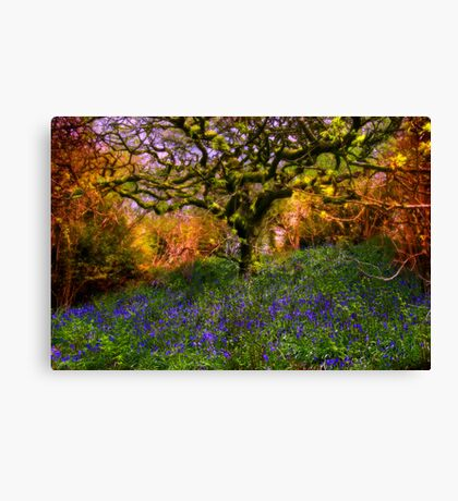 Bluebells And Tree Canvas Print