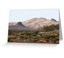 #6 The timeless desert and her plants -An overview Greeting Card