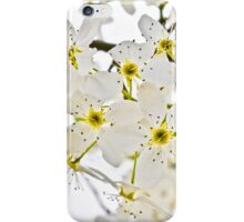 Watercolored Dogwood Daydreams iPhone Case/Skin