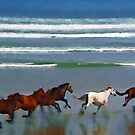 Wild Horses by Richard Murch