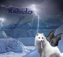 Xatodo by pkuhn