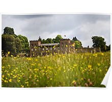 Through the Buttercups Poster