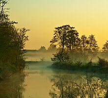 Misty Dawn -River Arrow,Alcester by David Dean