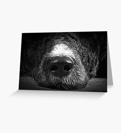Big Sniffer Greeting Card