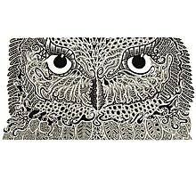 The Intricacies of Ink - Night Owl Photographic Print