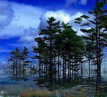 Tree Lined ! by Elfriede Fulda
