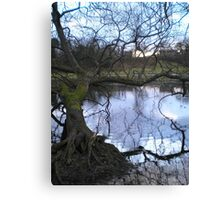 Mother Earth spreads her web Canvas Print