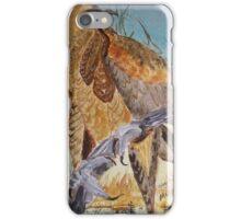 Wedge Tailed Eagle - bird of prey - Australia iPhone Case/Skin