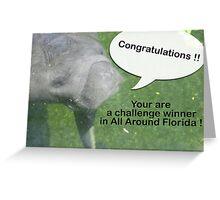 All Around Florida Banner Challenge Greeting Card