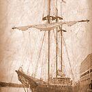 An Old Ship by Regenia Brabham