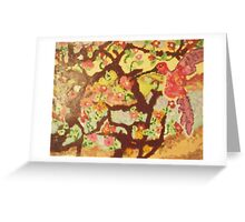 Hummingbird Fun Greeting Card