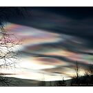 &quot;Mother Of Pearl Clouds 1&quot; by Maj-Britt Simble