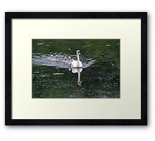 I Hope He's Brought Goodies!! Framed Print