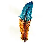 Watercolor feather Photographic Print