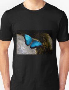 The Blue Morpho T-Shirt