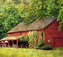 The Old Red Barn by Gayle Dolinger